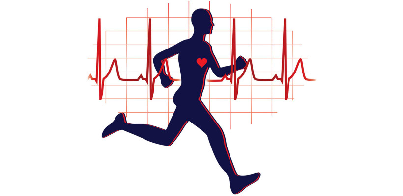 Image result for cardiovascular exercises
