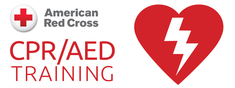 Image result for american red cross cpr trainingclip art